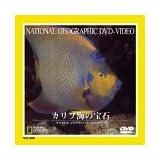 カリブ海の宝石 [DVD]