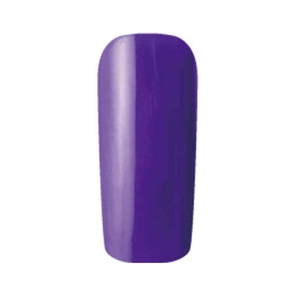 豚肉者食器棚Fleurir カラージェル C15 シコン 4ml UV/LED対応