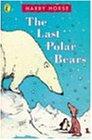 Last Polar Bearsの詳細を見る