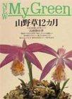 山野草12カ月―人気183種と管理のコツ (New My Green)