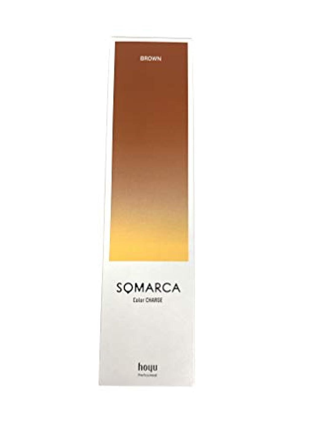 セマフォストレージ陽気なホーユー ソマルカ カラーチャージ ブラウン 130g