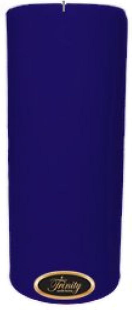空ナンセンス日付Trinity Candle工場 – Blueberry Fields – Pillar Candle – 4 x 9