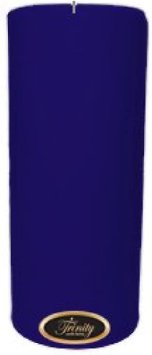 販売計画七面鳥蒸し器Trinity Candle工場 – Blueberry Fields – Pillar Candle – 4 x 9