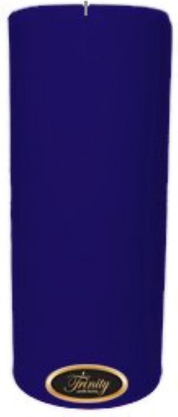 表面パンフレットテラスTrinity Candle工場 – Blueberry Fields – Pillar Candle – 4 x 9