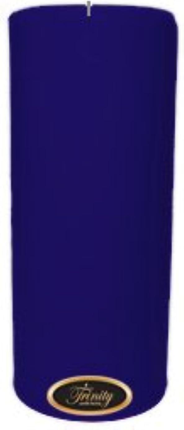 ライバル記憶に残る奨励Trinity Candle工場 – Blueberry Fields – Pillar Candle – 4 x 9