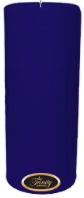 ゴミ解釈的いつもTrinity Candle工場 – Blueberry Fields – Pillar Candle – 4 x 9