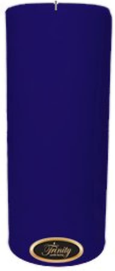 対応正しい広まったTrinity Candle工場 – Blueberry Fields – Pillar Candle – 4 x 9