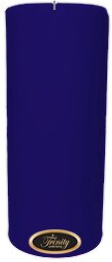 Trinity Candle工場 – Blueberry Fields – Pillar Candle – 4 x 9