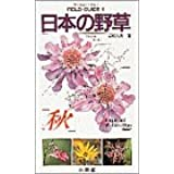フィールド・ガイドシリーズ6 日本の野草 秋
