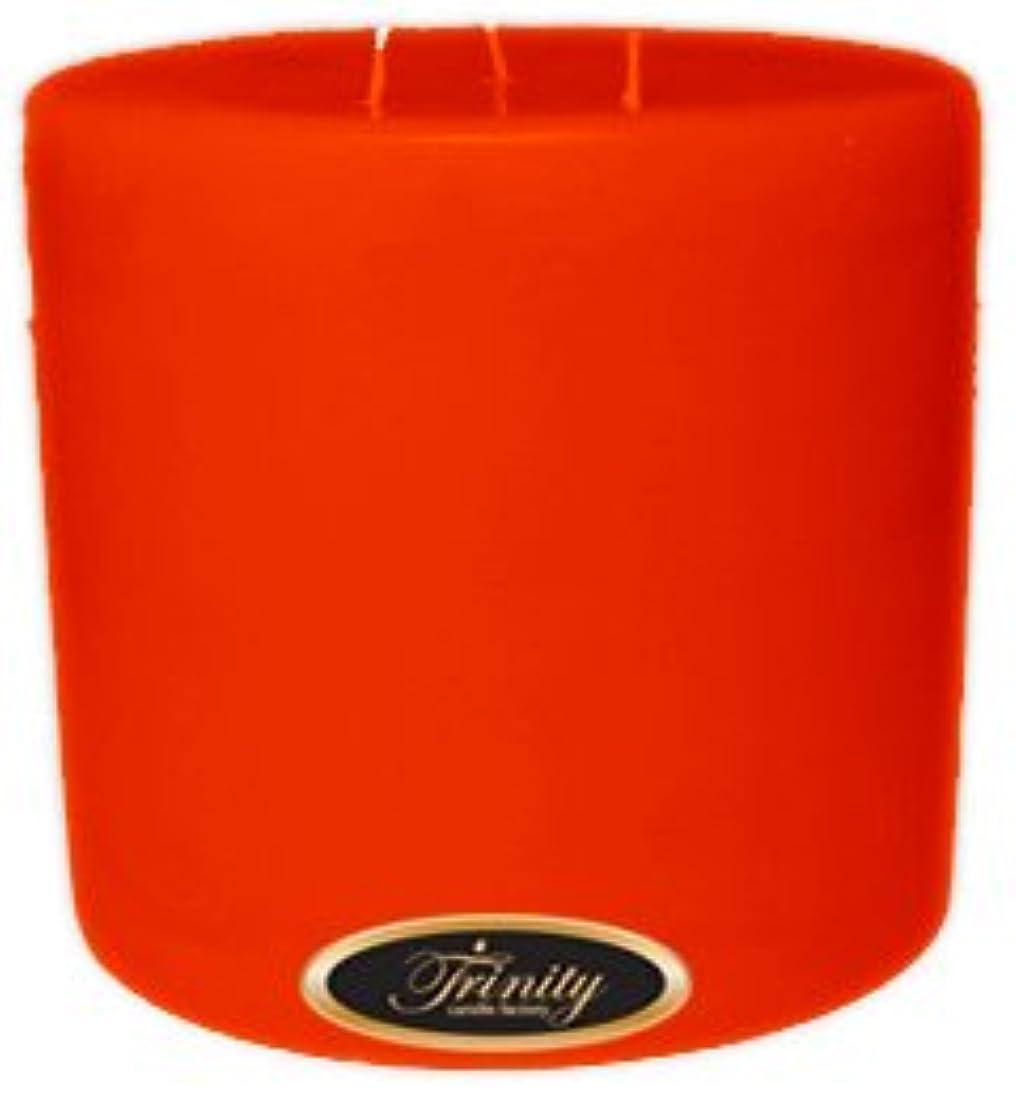 まともな隣人要旨Trinity Candle工場 – Autumn harvest – Pillar Candle – 6 x 6