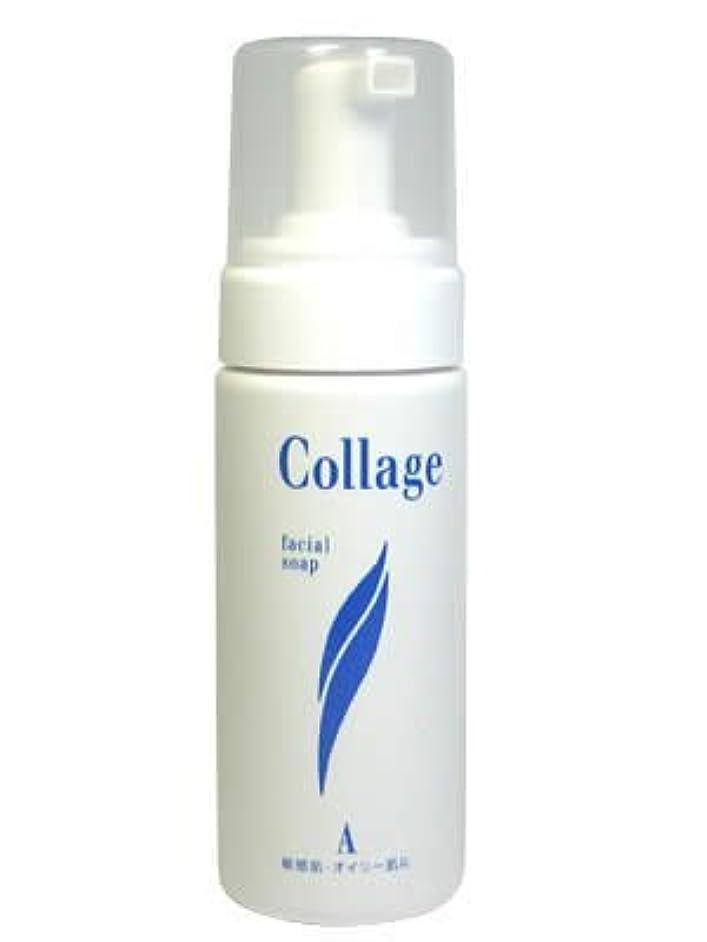 系統的トレイ透明にコラージュA フェイシャルソープ(泡状洗顔料) オイリー肌 150ml