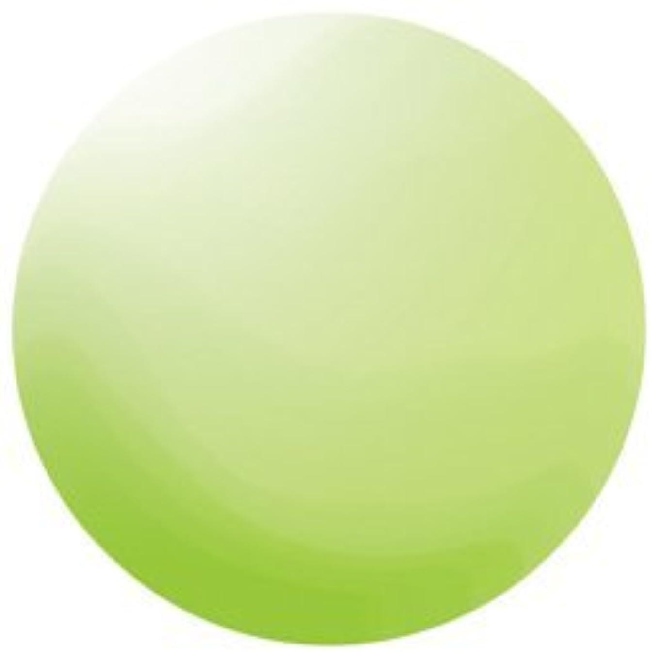 育成高いブロンズKOKOIST カラージェル E-136 4g ペリドットグリーンビーチグラス