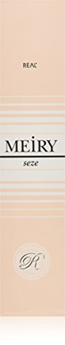 暴徒脱走ポップメイリー セゼ(MEiRY seze) ヘアカラー 1剤 90g 3NB