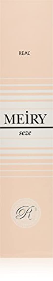 主観的分布なんでもメイリー セゼ(MEiRY seze) ヘアカラー 1剤 90g 3NB