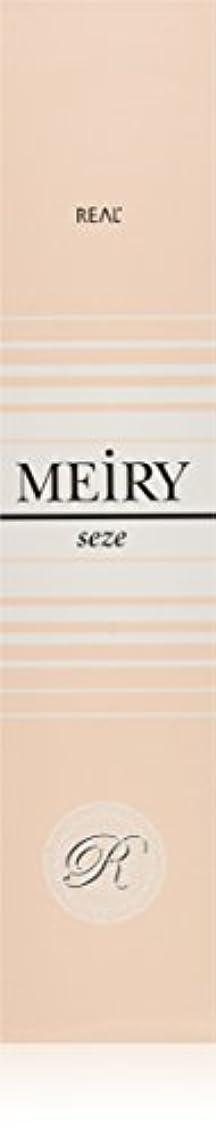 哲学博士決定するリハーサルメイリー セゼ(MEiRY seze) ヘアカラー 1剤 90g 3NB