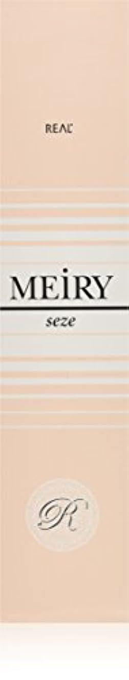 社会忠実に政治家メイリー セゼ(MEiRY seze) ヘアカラー 1剤 90g 3NB