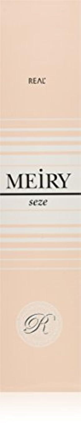 窓数学的なジョージハンブリーメイリー セゼ(MEiRY seze) ヘアカラー 1剤 90g 3NB