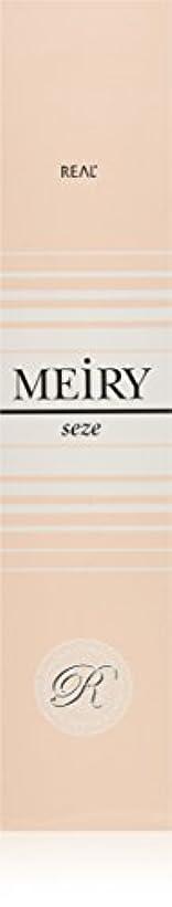 適格クリーク現実メイリー セゼ(MEiRY seze) ヘアカラー 1剤 90g 3NB