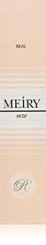 合意オープニング前奏曲メイリー セゼ(MEiRY seze) ヘアカラー 1剤 90g 3NB