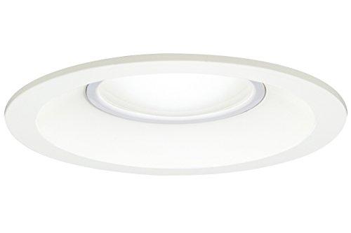 東芝ライテック LEDダウンライト 浴室 アウトドア LED一体形 昼白色 60W φ100