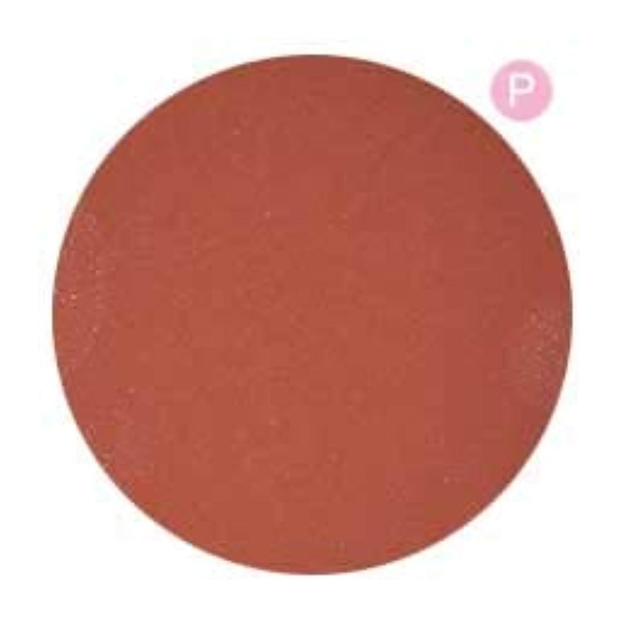 拍手するアジャ一掃するPRE GEL カラージェル カラーEX コーラルパールルージュ-P 3g PG-CE571 UV/LED対応