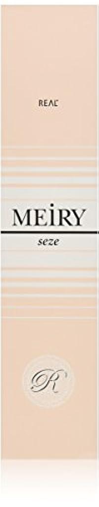 震えるヒューバートハドソン悲惨なメイリー セゼ(MEiRY seze) ヘアカラー 1剤 90g 9WB