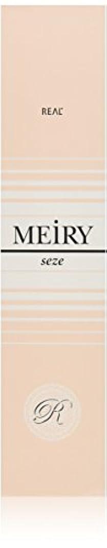 日記容赦ないマニュアルメイリー セゼ(MEiRY seze) ヘアカラー 1剤 90g 9WB