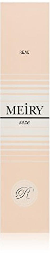 不快海港純度メイリー セゼ(MEiRY seze) ヘアカラー 1剤 90g 9WB
