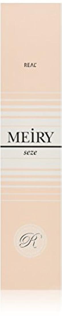 アマチュアパズルギャンブルメイリー セゼ(MEiRY seze) ヘアカラー 1剤 90g 9WB
