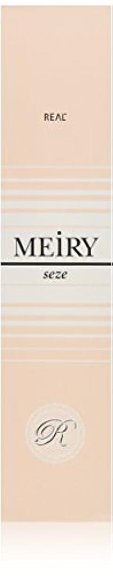 避難甘くするエンドテーブルメイリー セゼ(MEiRY seze) ヘアカラー 1剤 90g 9WB