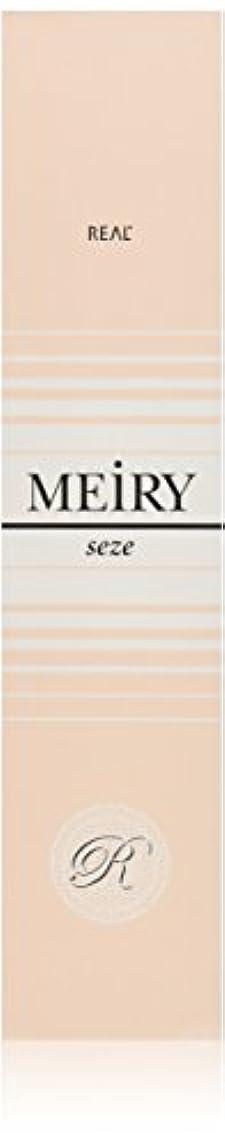 水分落ち着いたレスリングメイリー セゼ(MEiRY seze) ヘアカラー 1剤 90g 9WB