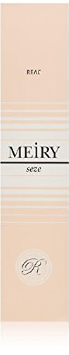 装置より多い会員メイリー セゼ(MEiRY seze) ヘアカラー 1剤 90g 9WB