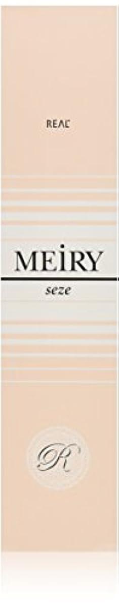 ダニ荒涼とした昇るメイリー セゼ(MEiRY seze) ヘアカラー 1剤 90g 9WB