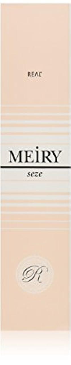 のヒステリックマイクロフォンメイリー セゼ(MEiRY seze) ヘアカラー 1剤 90g 9WB