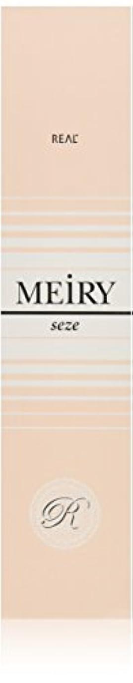 長椅子怖いサーマルメイリー セゼ(MEiRY seze) ヘアカラー 1剤 90g 9WB