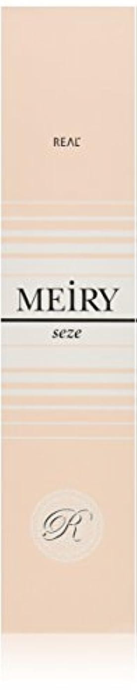 ピュー主観的迷彩メイリー セゼ(MEiRY seze) ヘアカラー 1剤 90g 9WB