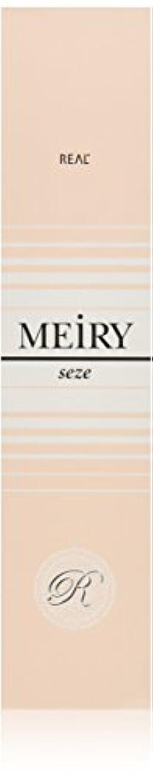 支配的騒々しい漫画メイリー セゼ(MEiRY seze) ヘアカラー 1剤 90g 9WB