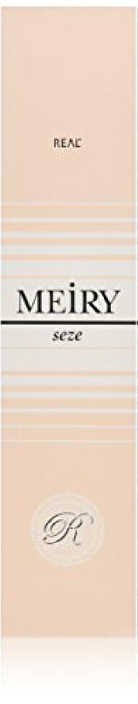 完璧取り除くモードメイリー セゼ(MEiRY seze) ヘアカラー 1剤 90g 9WB