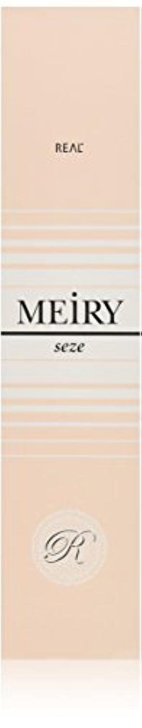 不適指令シーンメイリー セゼ(MEiRY seze) ヘアカラー 1剤 90g 9WB