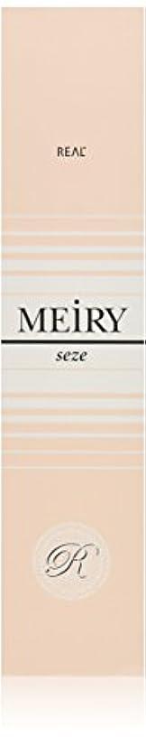 繕う終了する斧メイリー セゼ(MEiRY seze) ヘアカラー 1剤 90g 9WB