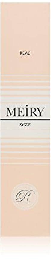 おなかがすいた形式行き当たりばったりメイリー セゼ(MEiRY seze) ヘアカラー 1剤 90g 9WB