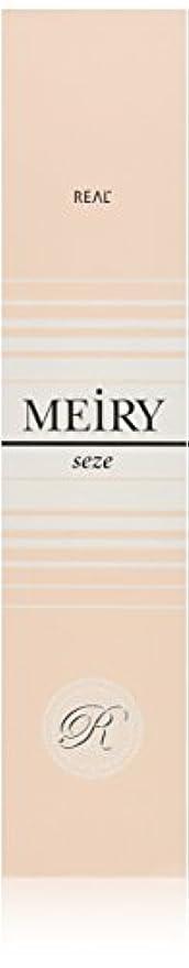 使い込む繊維パッドメイリー セゼ(MEiRY seze) ヘアカラー 1剤 90g 9WB