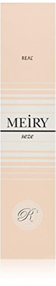 メイリー セゼ(MEiRY seze) ヘアカラー 1剤 90g 9WB