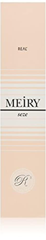 仕様写真を描く時メイリー セゼ(MEiRY seze) ヘアカラー 1剤 90g 9WB