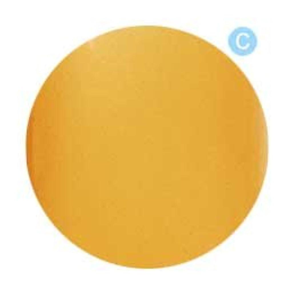 子音白鳥お気に入りPalms Graceful カラージェル 3g 020 クリアオレンジ