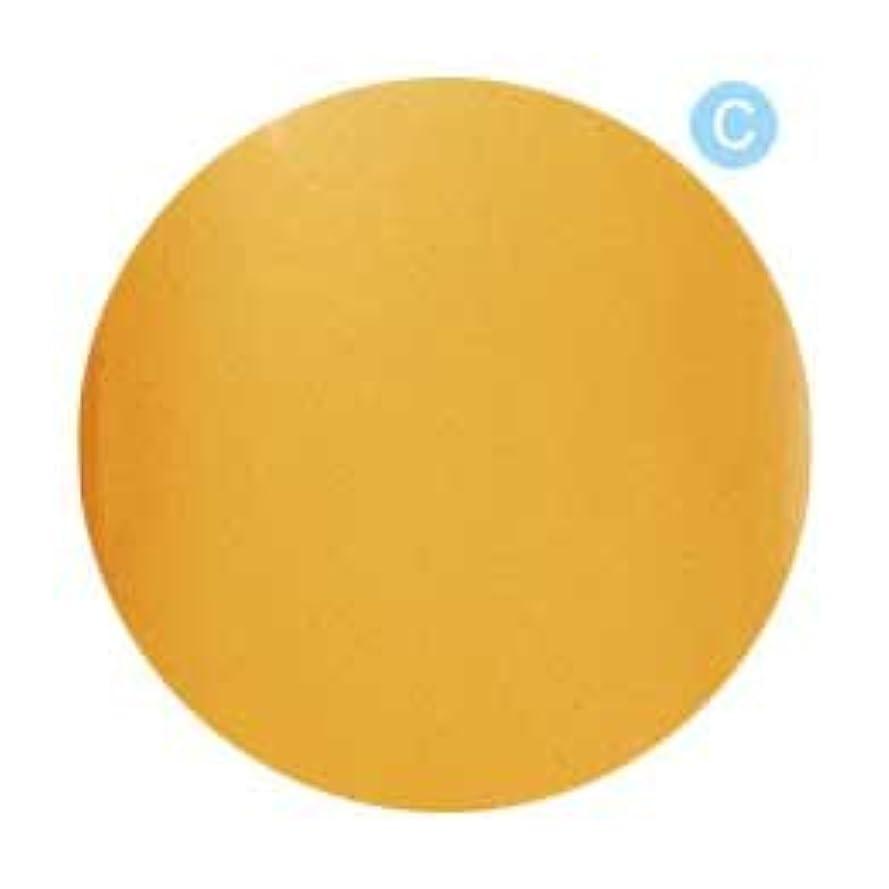 かわいらしい皿受粉者Palms Graceful カラージェル 3g 020 クリアオレンジ
