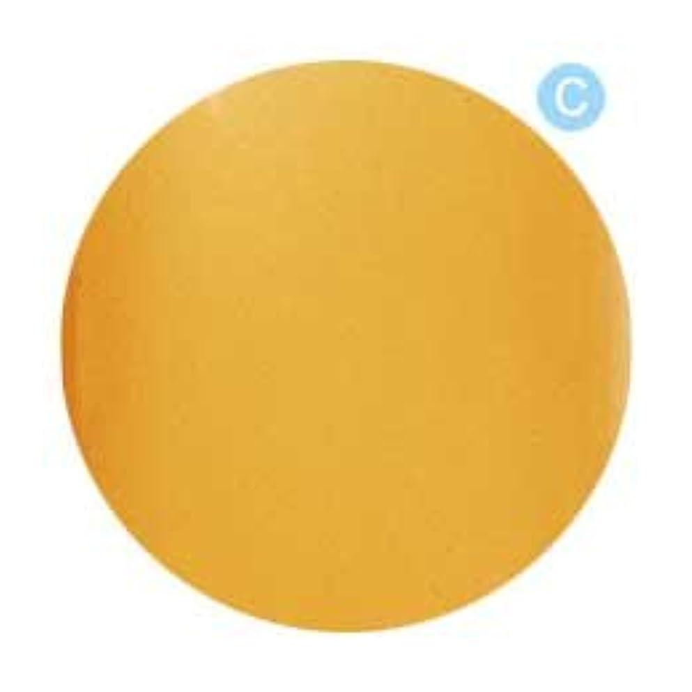 クレジット多数の奪うPalms Graceful カラージェル 3g 020 クリアオレンジ