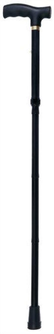配送カニ環境保護主義者ナカバヤシ エコノミータイプ/折畳みステッキ/ブラッ RQS-E001-BK 00013042 【まとめ買い3本セット】