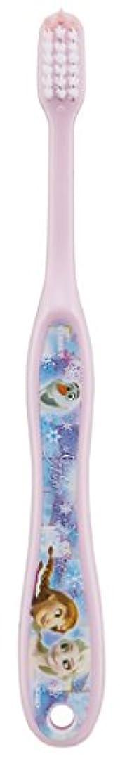 本物流体集中的なSKATER アナと雪の女王 歯ブラシ(転写タイプ) 小学生用 TB6N