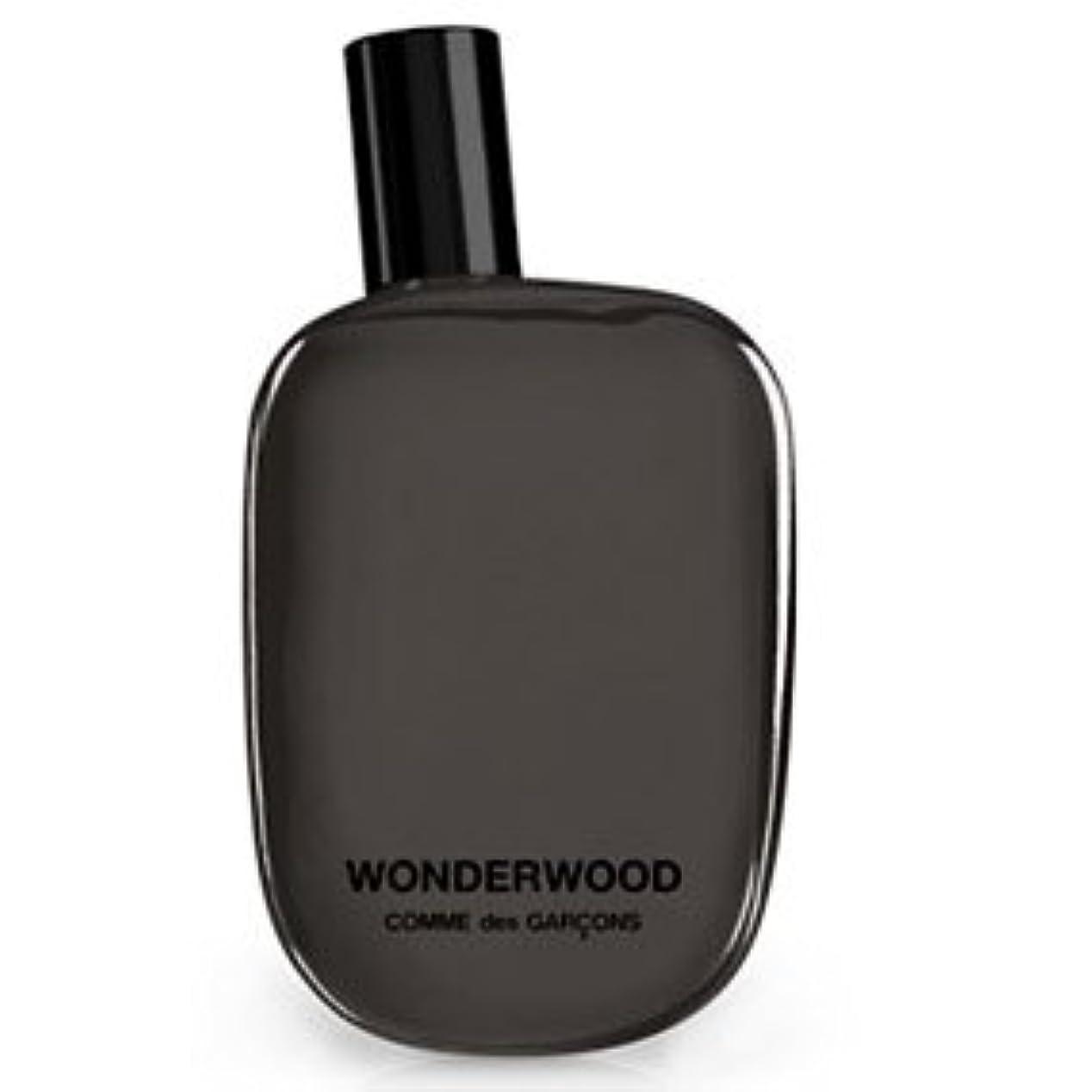 ファイアルバス取り壊すWonderwood (ワンダーウッド) 3.4 oz (100ml) EDP Spray by Comme des Garcons for Women